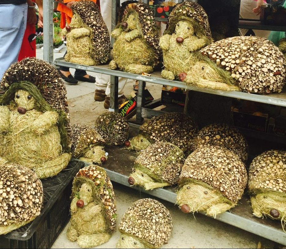 Kouter Flower Market