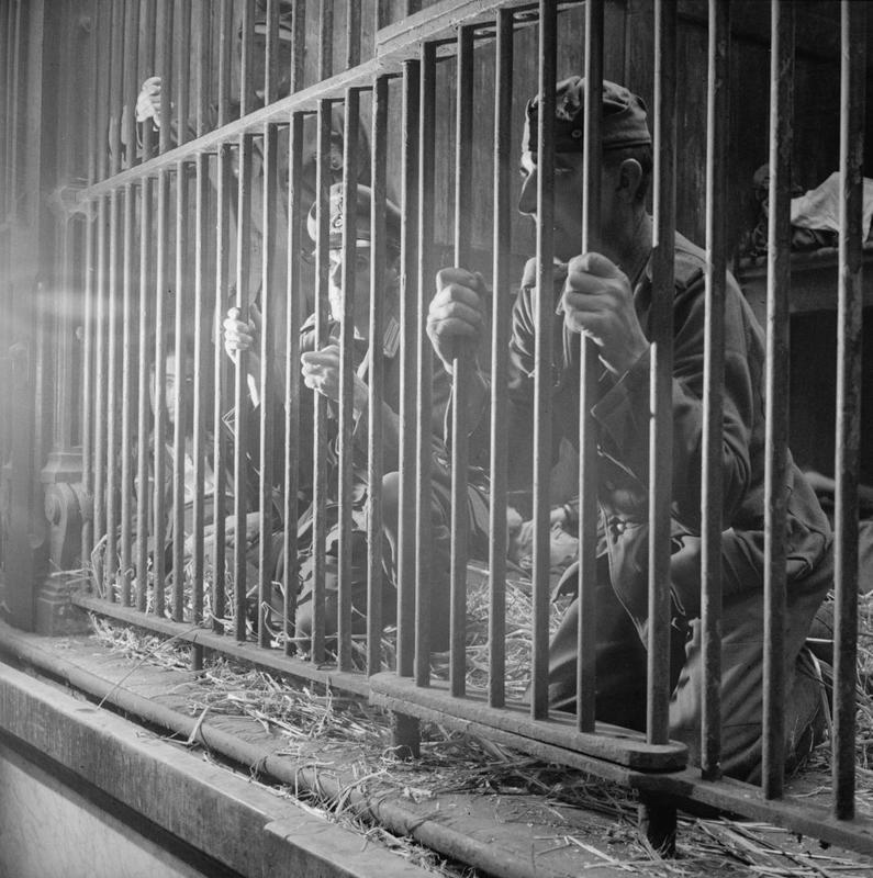 German soldiers being held prisoner in the Antwerp Zoo