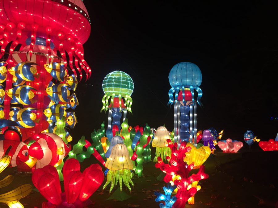 China Lights - Under the Sea
