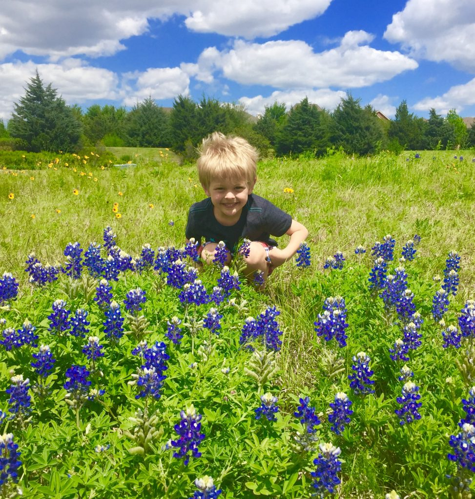 Texas Bluebonnets (and sunny, blue skies)